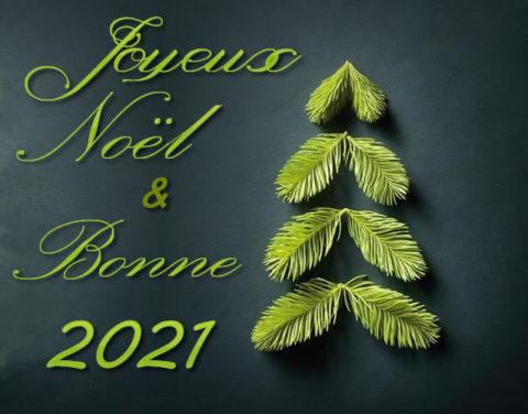 Bonnes fêtes de fin d'année 2020